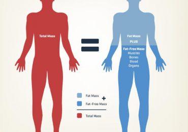 la composizione corporea