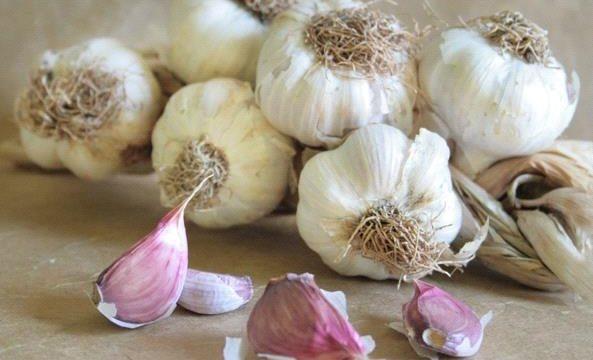 L'aglio è una panacea per molti disturbi
