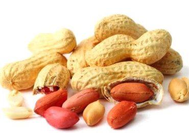 Le arachidi