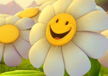 elogio del sorriso
