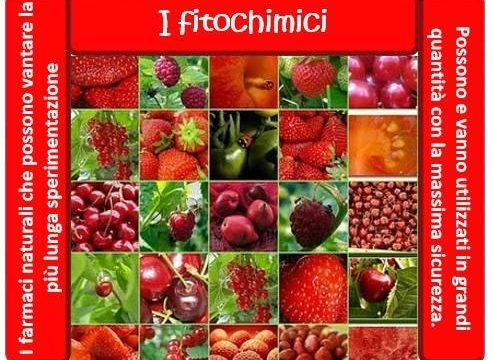 I fitochimici