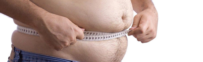 le funzioni del grasso