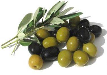 allergia alle olive