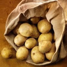 La patata di Bologna IGP